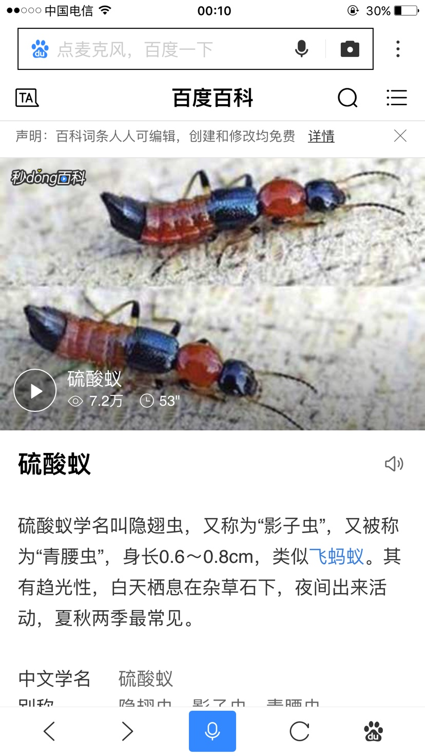 家里有硫酸蚁怎么办,又不能喷杀虫剂,也不能插